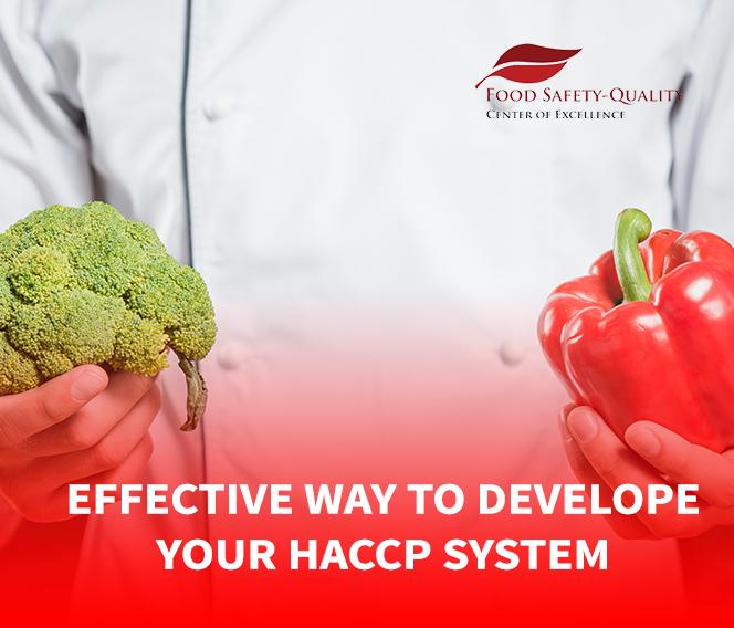 Effective Way To Develop Your HACCP System Surabaya